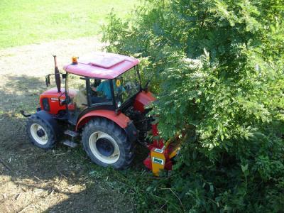 Tocatoarea forestiera MG | Agriculture & Jurop Group